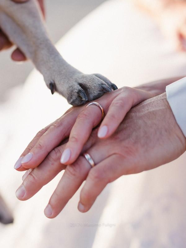 fotografo-matrimonio-tenuta-bonzara00056