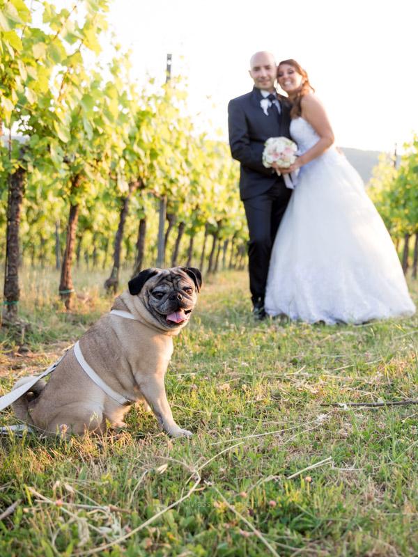 fotografo-matrimonio-tenuta-bonzara00060