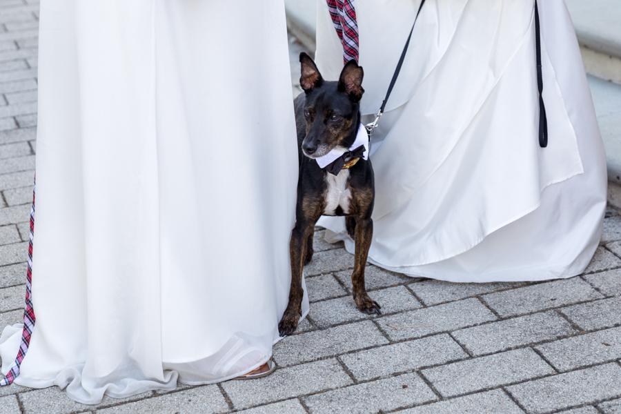 foto-matrimonio-sala-rossa-bologna-00062